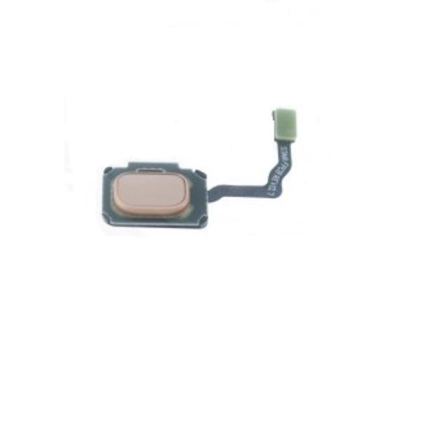 FLEX HUELLA DACTILAR PARA SAMSUNG GALAXY S9, S9+ - ORO